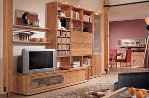 Contemporary-living-room-with-drawers-cabinets-and-shelves-with-wood-TV-set