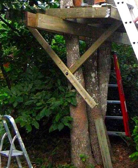 Домик на дереве для детей