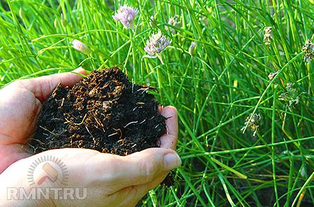 Органическое земледелие. Основные особенности