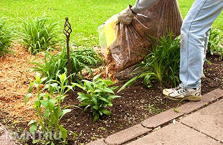 Органическое земледелие. Хватит разрушать почву перекапыванием и прополкой