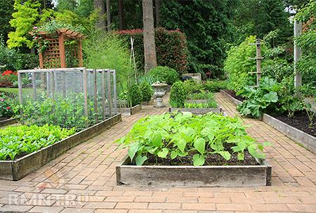 Органическое земледелие. Как заложить «умные» грядки