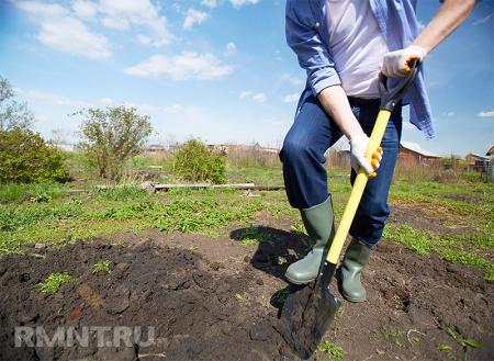 Почва— основа основ