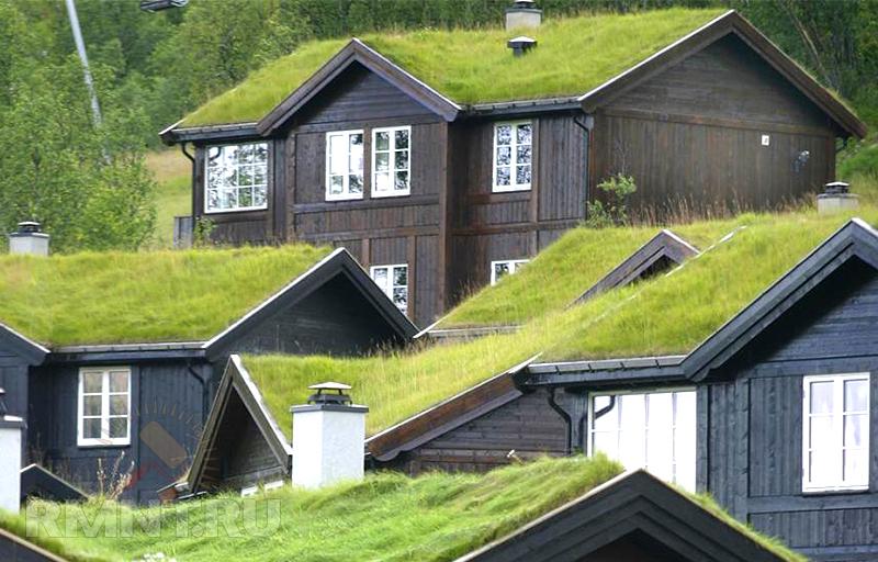 Крыша газон вентиляция гидроизоляция наливные полиуретановые полы в квартире отзывы