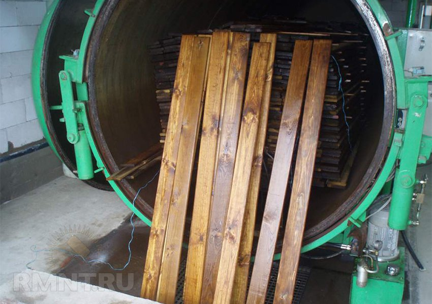 Жуки-короеды, шашели, термиты. Как бороться с редителями древесины