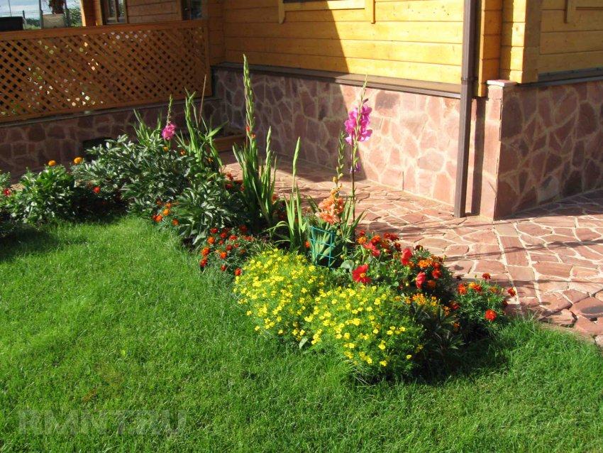 Пни с цветами 40