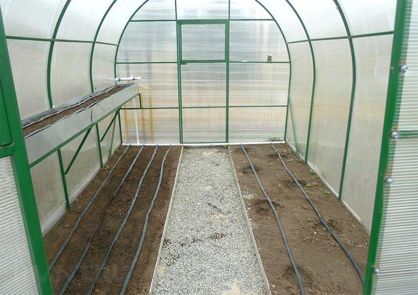 система корневого полива для комнатных растений