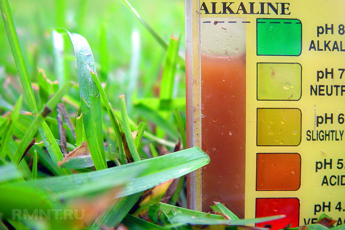 Как улучшить структуру почвы и повысить её плодородие