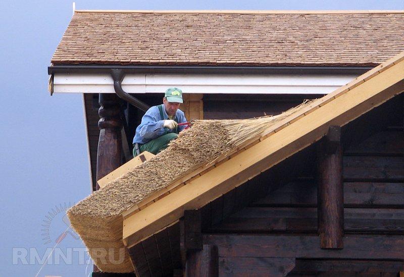 Крыша из камыша: особенности
