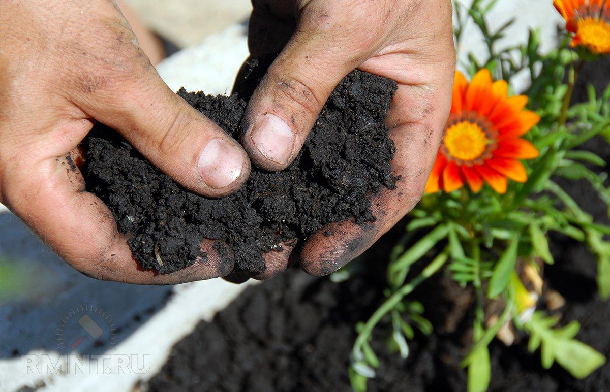 Органическое земледелие: хватит разрушать почву перекапыванием и прополкой
