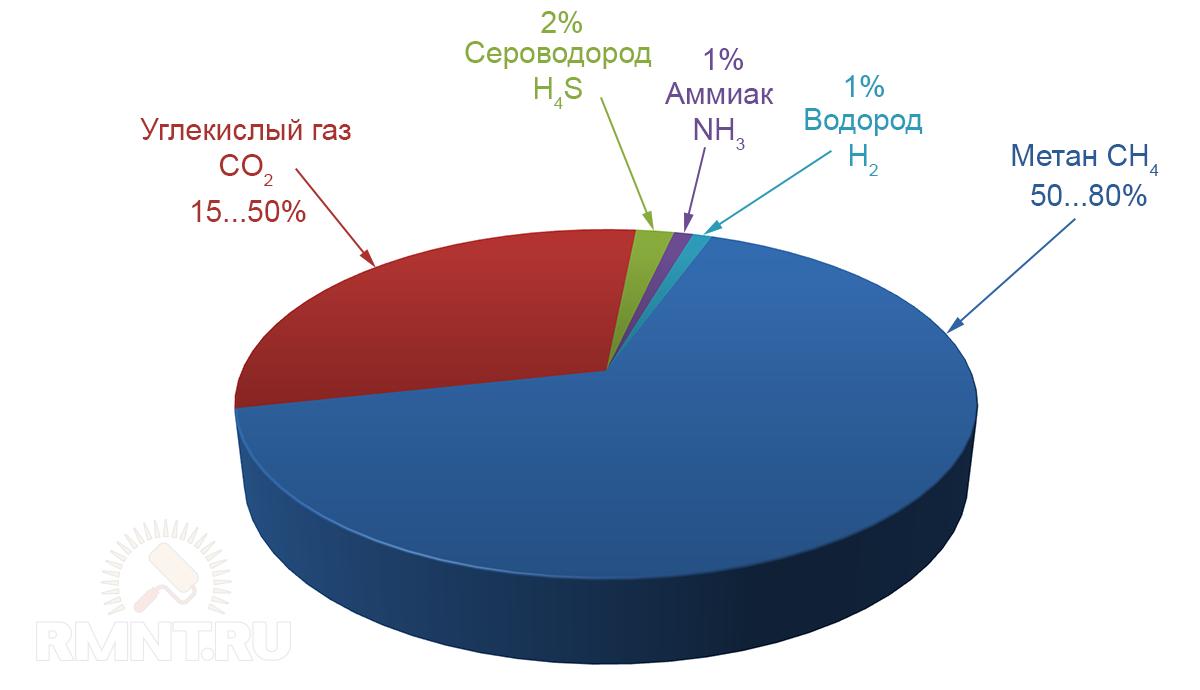Химический состав биогаза