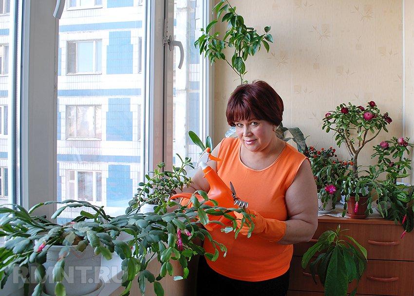 Сад на балконе своими руками 836