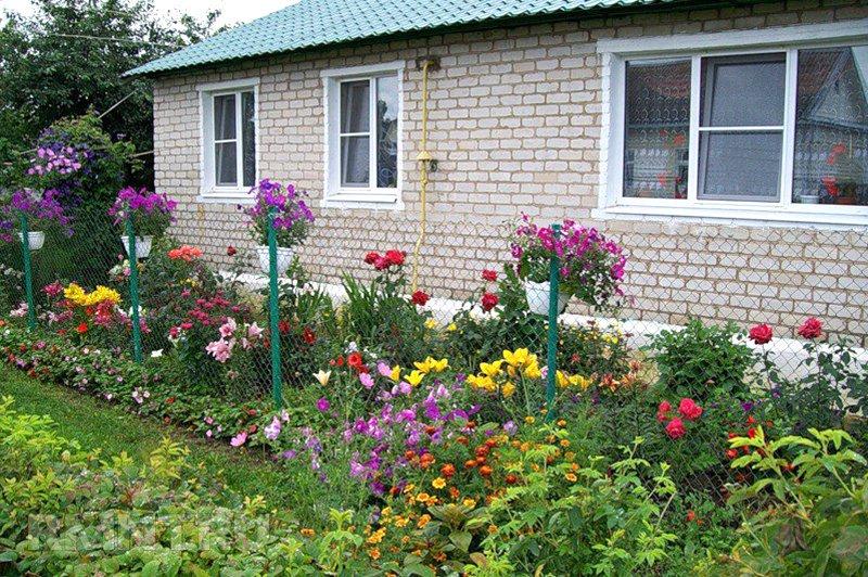 Цветы возле дома своими руками