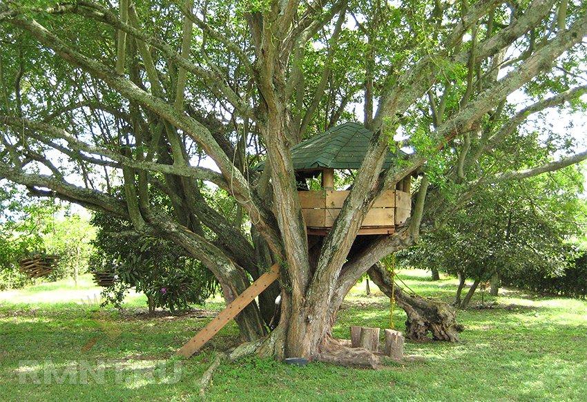Как детям построить домик на дереве