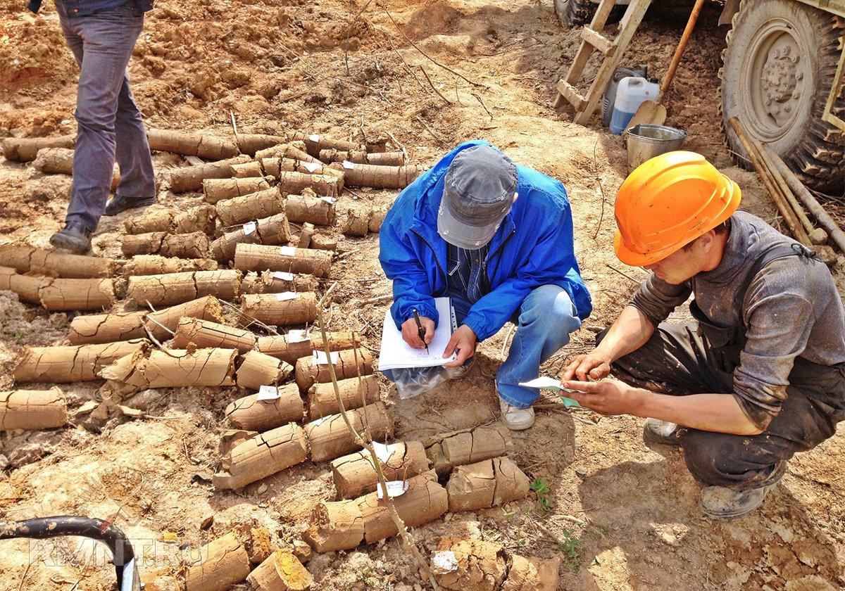 Исследование грунта под фундамент