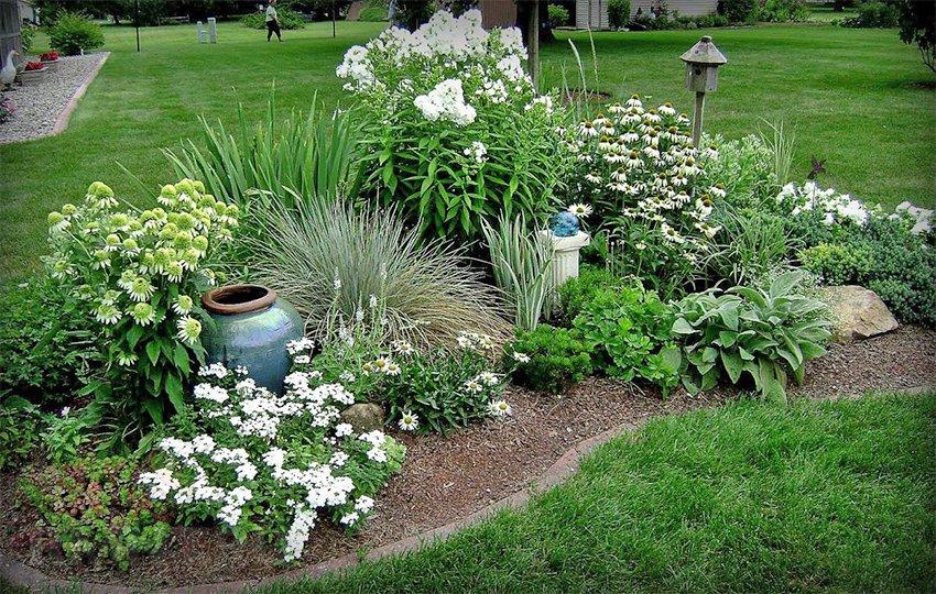 Как сделать клумбу и посадить цветы, цветущие все лето