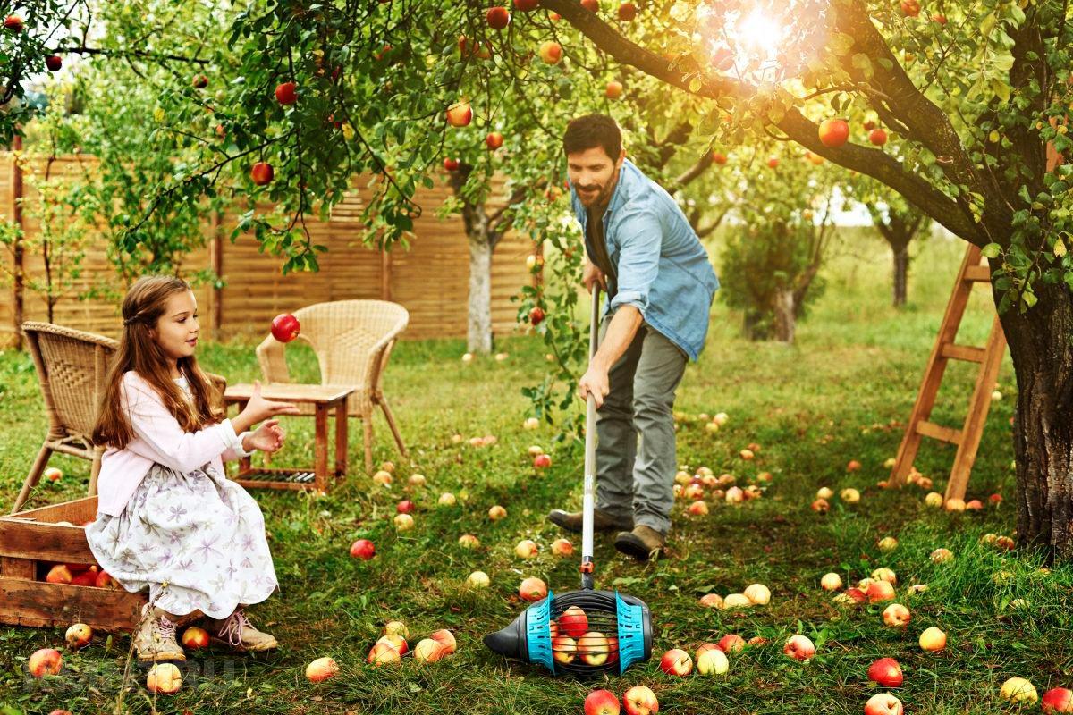 Приспособления для уборки фруктов — плодосъёмники