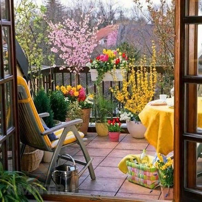 Easy Indoor Garden In Marvellous Easy Garden   curexco