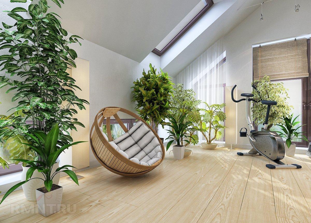 Большие комнатные растения в интерьере