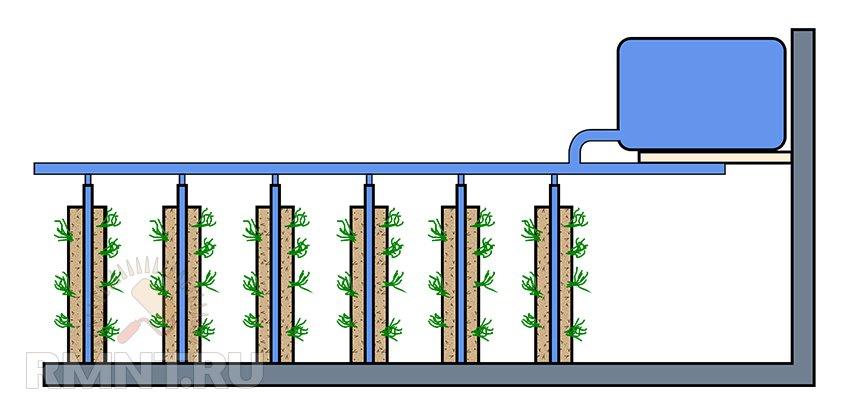 Грядки в теплице: планировка и устройство вертикальных грядок