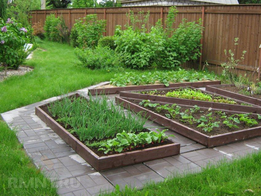Дача сад огород и дизайн
