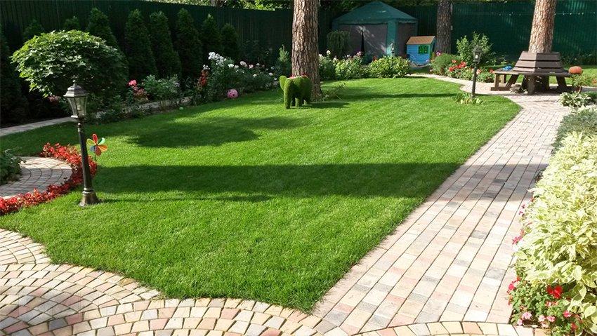 лужайка перед домом своими руками фото