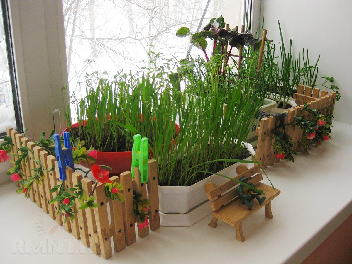 Как выбрать товары для сада и огорода