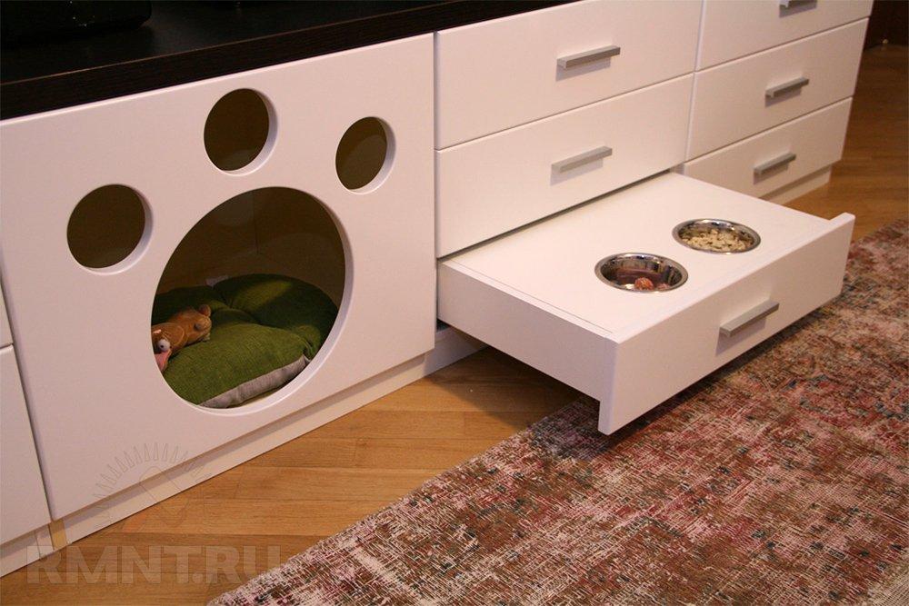 Место для собаки дома