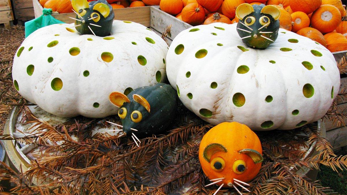 Декорации из тыквы
