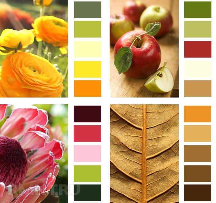 Цвет в интерьере. Обучаемся наконец-то создавать кок бы цветовые палитры