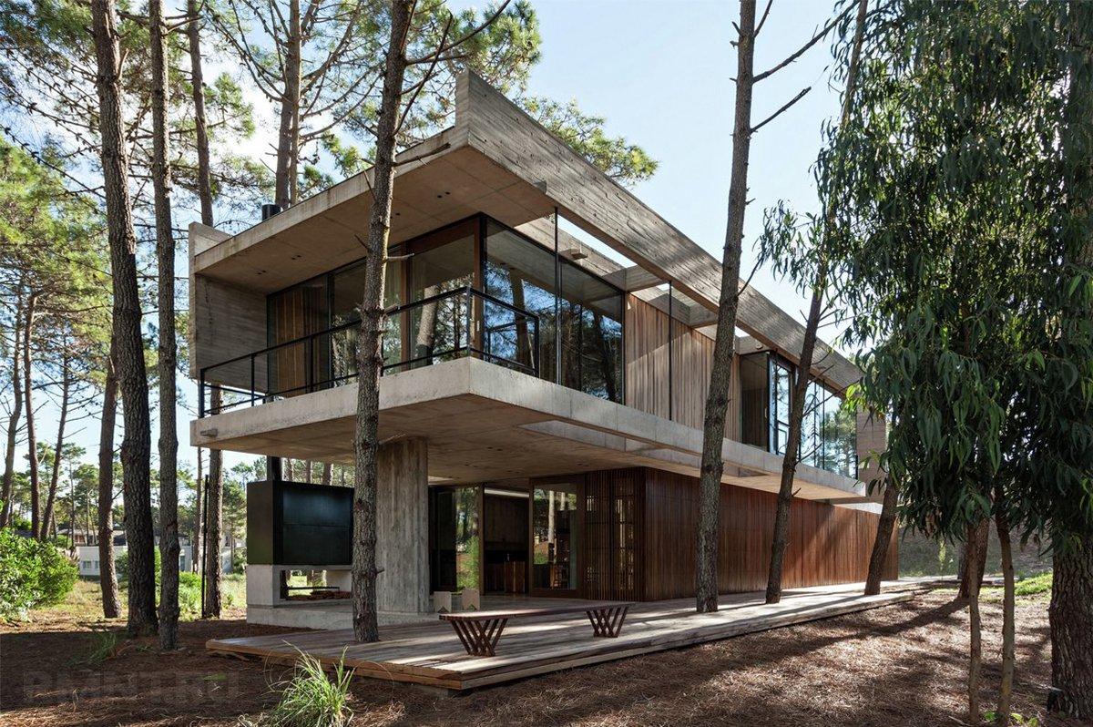 Как сберечь деревья при строительстве дома на участке