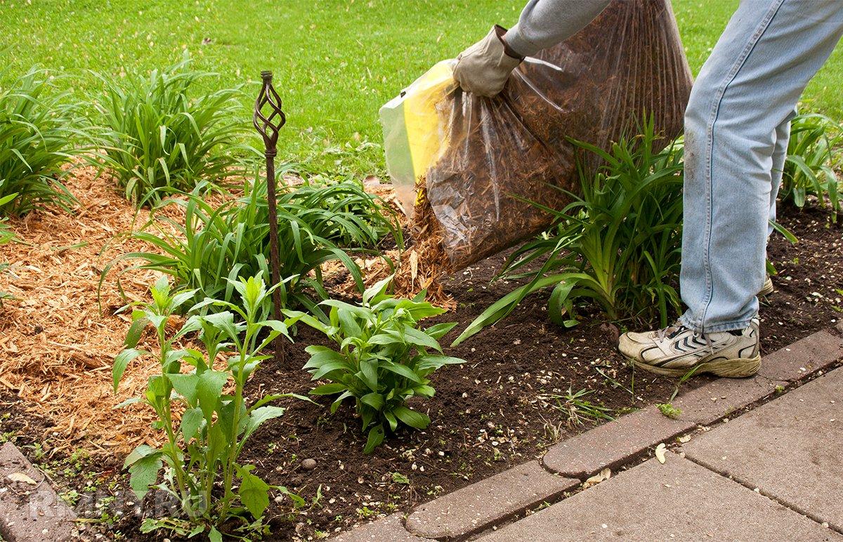 Как защищать почву на полях 🚩 Сад и огород