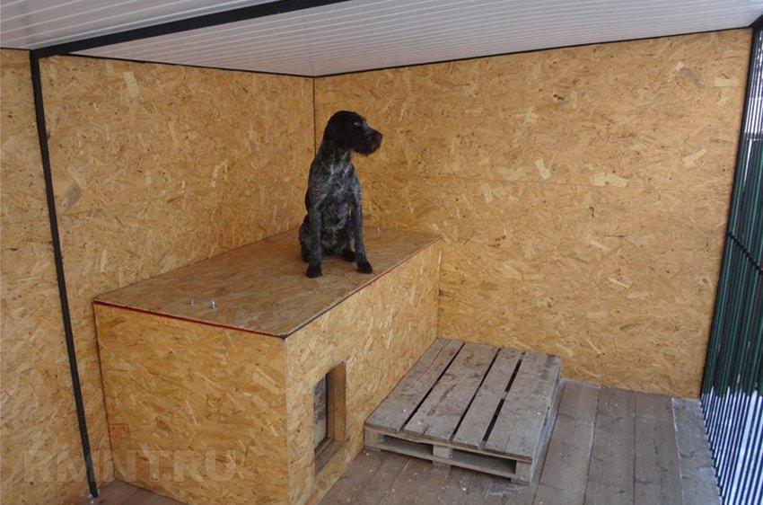 Уличный вольер для собаки своими руками: материалы, размеры, схемы